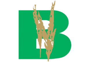 bhullargroup